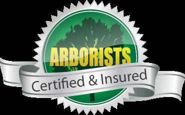 certified-arborists